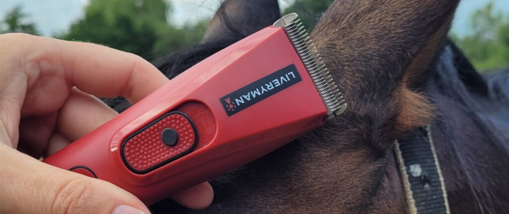 Liveryman-clippers