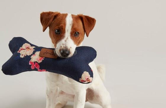 Dog Toys and Treats