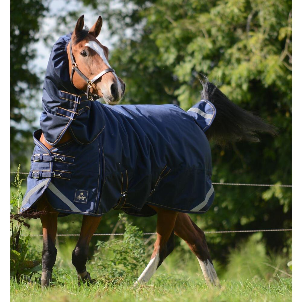 Mackey Equestrian Mackey Wicklow Detachaneck Turnout 360g in Navy/Gold