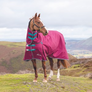 Shires Highlander Original 300 Turnout Combo in Raspberry