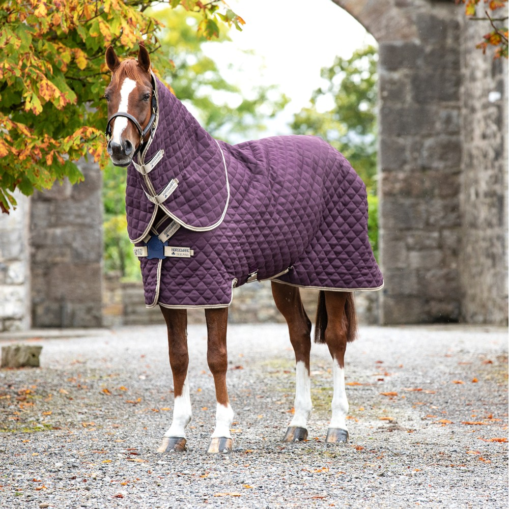 Horseware Amigo Amigo Stable Plus Medium 200g in Fig/Navy/Tan