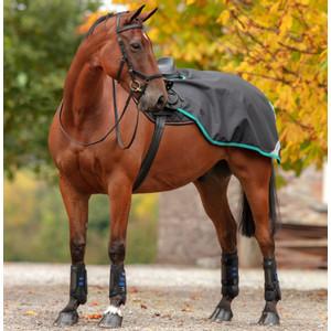 Horseware Amigo Amigo Competition Sheet in Black/Teal/Dark Cherry