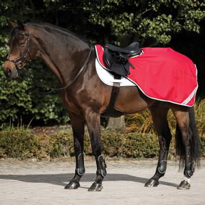 Horseware Amigo Amigo Competition Sheet in Red/White/Green/Black