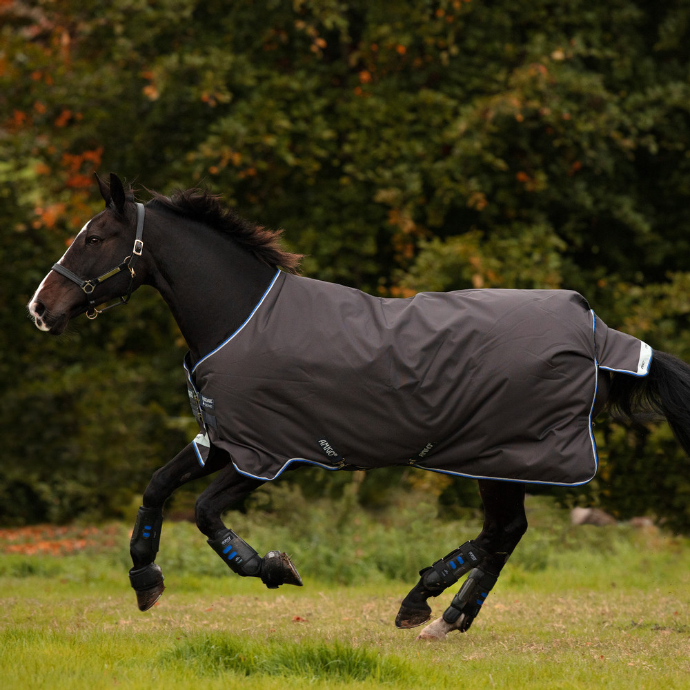 Horseware Amigo Amigo Pony Turnout Bravo 12 Lite 0g in Excalibur/Blue/Black