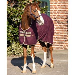 Horseware Amigo Amigo Stable Sheet in Fig/Navy/Tan