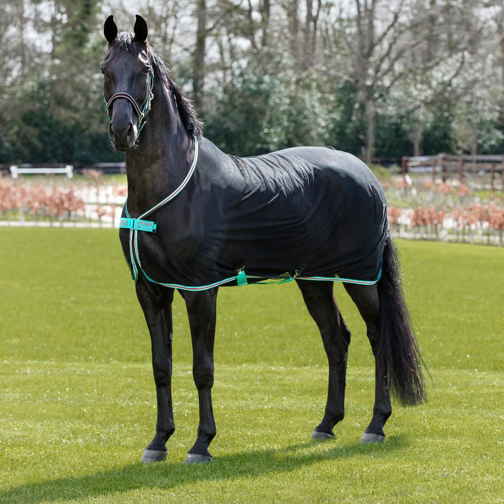 Horseware Amigo Amigo Net Cooler in Black/Teal/Dark Cherry