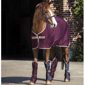 Horseware Amigo Amigo Jersey Cooler in Fig/Navy/Tan
