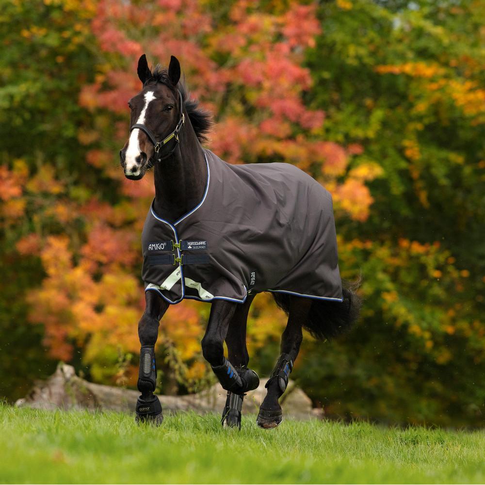 Horseware Amigo Amigo Bravo 12 Turnout 100g in Excalibur/Strong Blue/Black