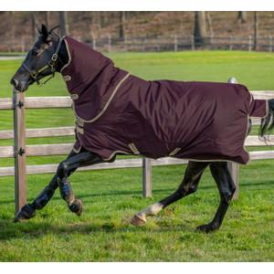 Horseware Amigo Amigo Hero Ripstop Plus 100g in Fig/Navy/Tan