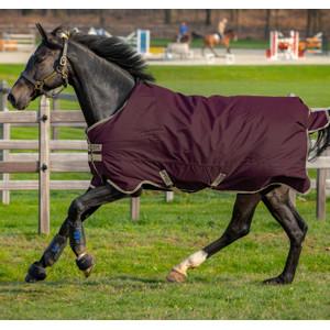 Horseware Amigo Amigo Hero Ripstop Lite 0g in Fig/Navy/Tan