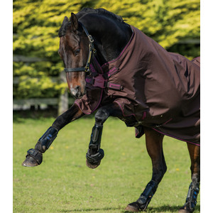 Horseware Amigo Amigo Hero 900 Turnout Lite 50g in Chocolate/Raspberry