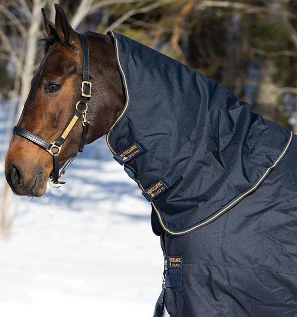 Horseware Amigo Amigo Bravo 12 XL Hood 150g in Gold/Navy