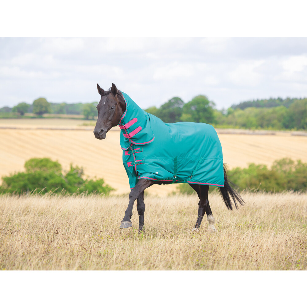 Shires Tempest Original 100 Combo Turnout in Green/Pink