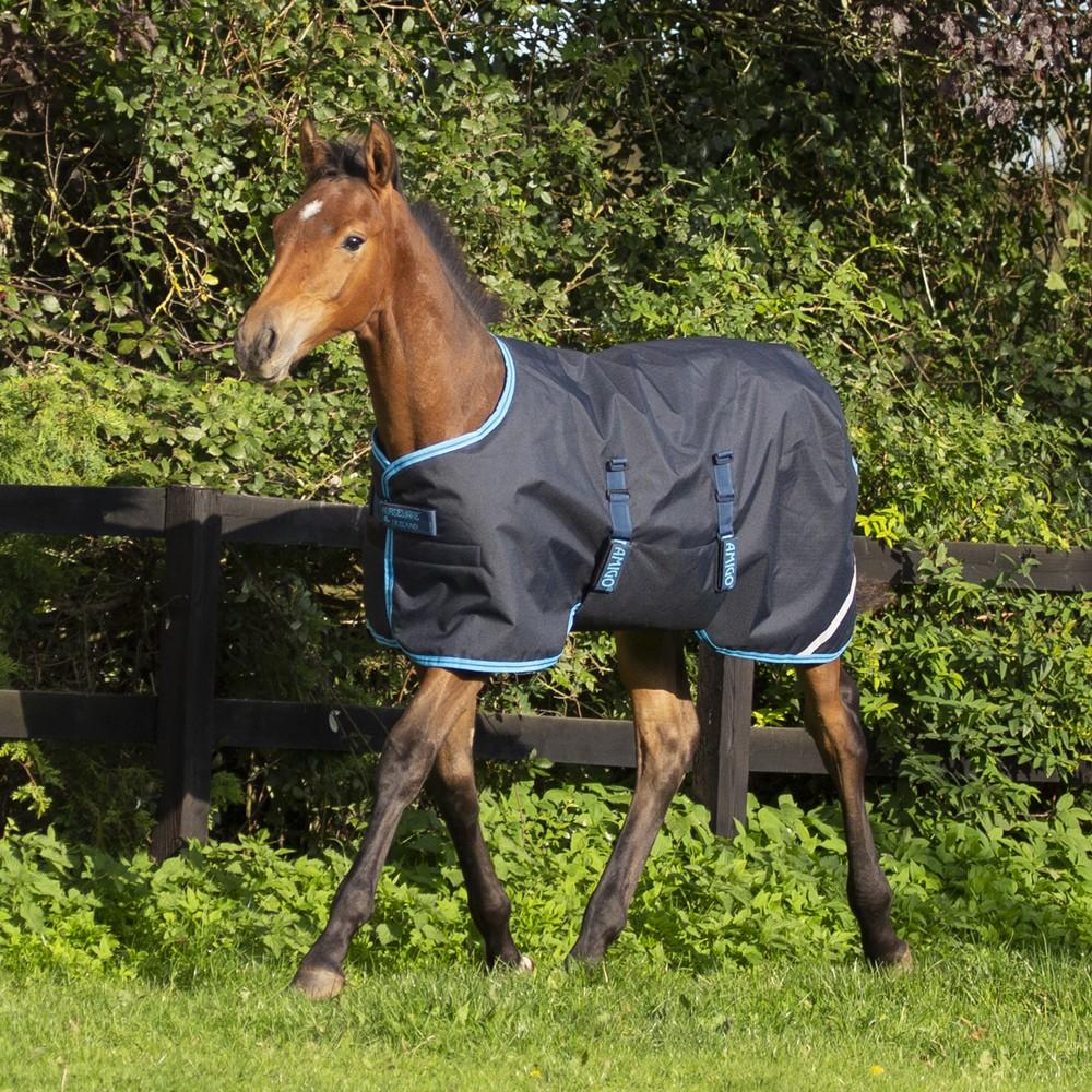Horseware Amigo Amigo Foal Rug 50g Ripstop in Navy/Electric Blue