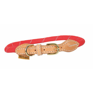 Digby & Fox Reflective Dog Collar - Red in Red