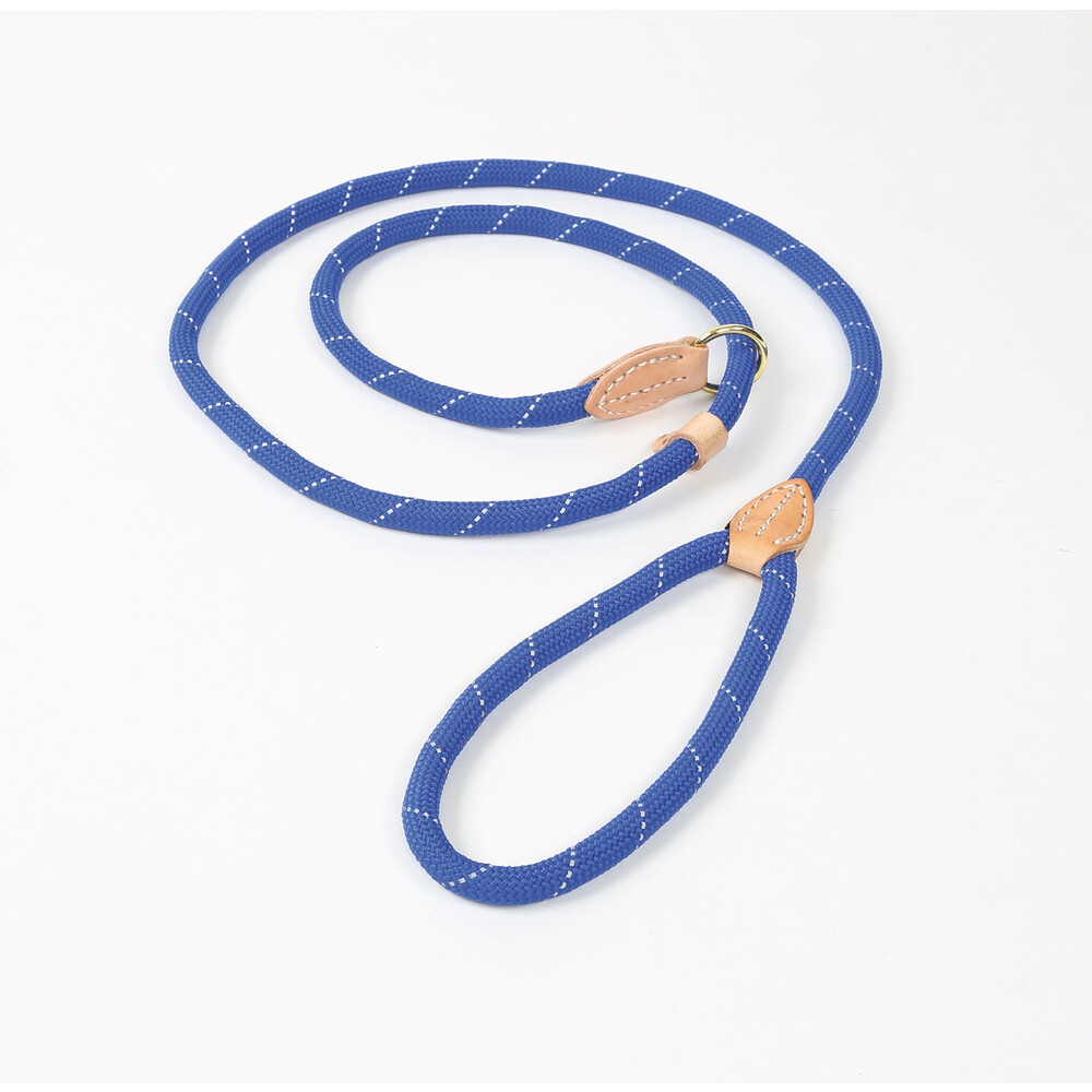 Digby & Fox Reflective Slip Dog Lead - Blue in Blue