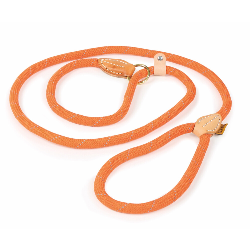Digby & Fox Reflective Slip Dog Lead - Orange in Orange