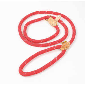 Digby & Fox Reflective Slip Dog Lead - Red in Red