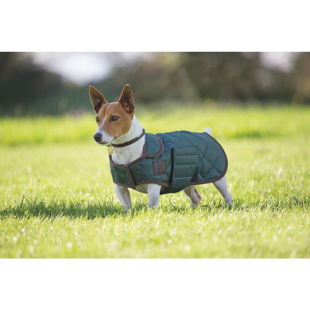 Digby & Fox Quilted Dog Coat - Dark Green in Dark Green