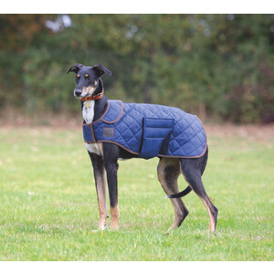 Digby & Fox Quilted Dog Coat - Navy in Navy
