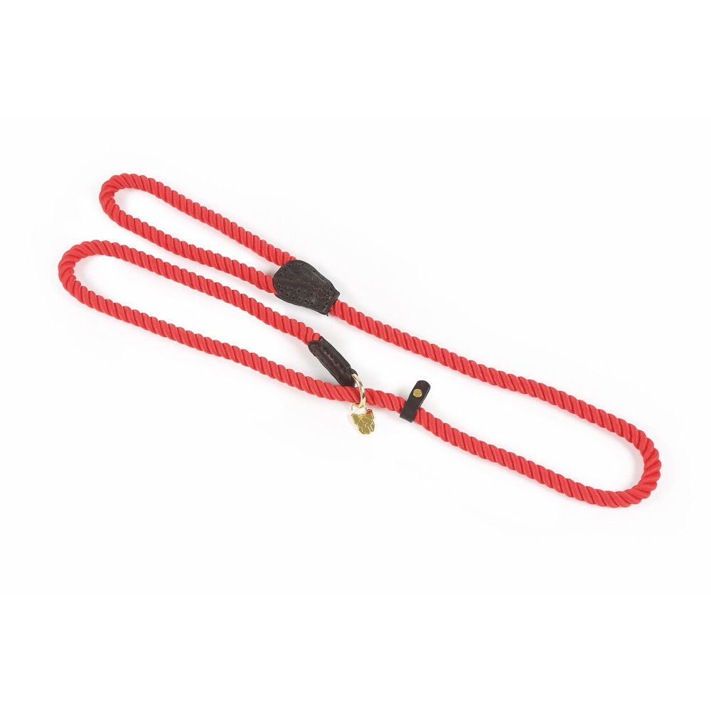 Digby & Fox Rope Slip Dog Lead in Red
