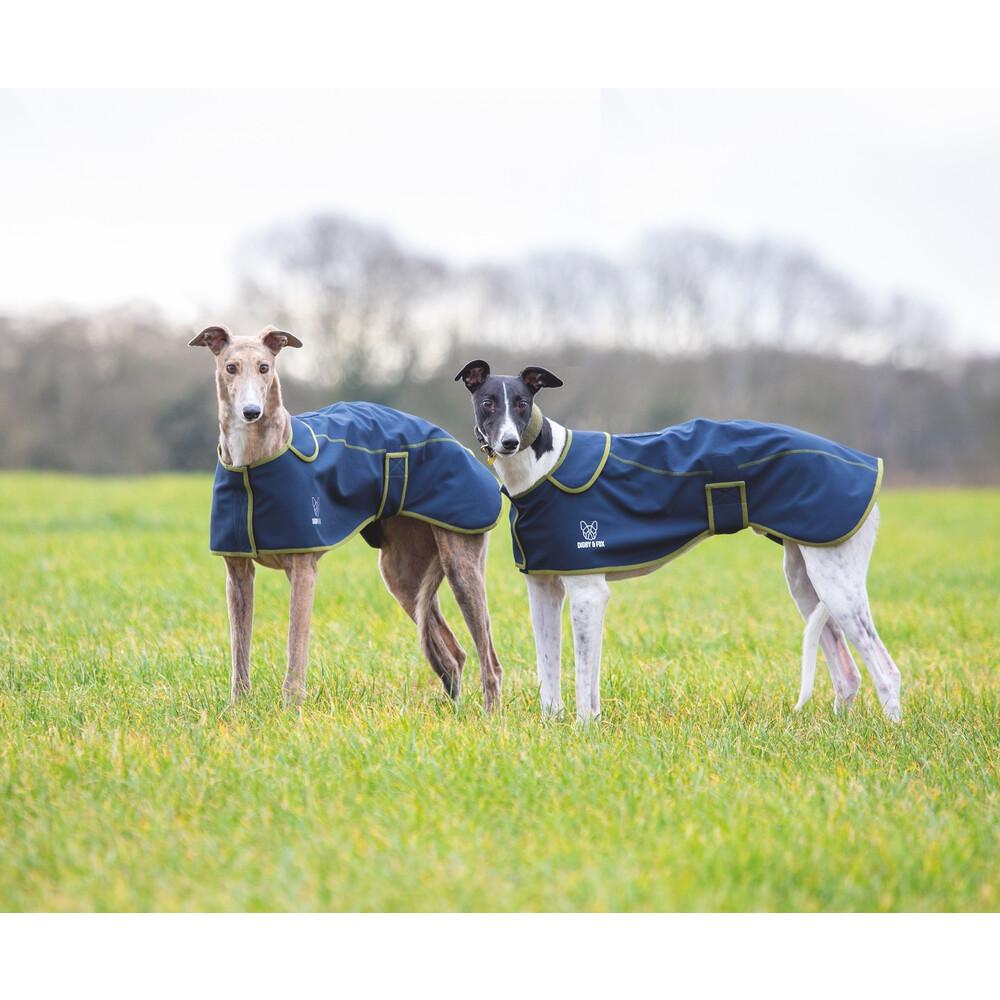 Digby & Fox Softshell Greyhound Coat - Navy in Navy