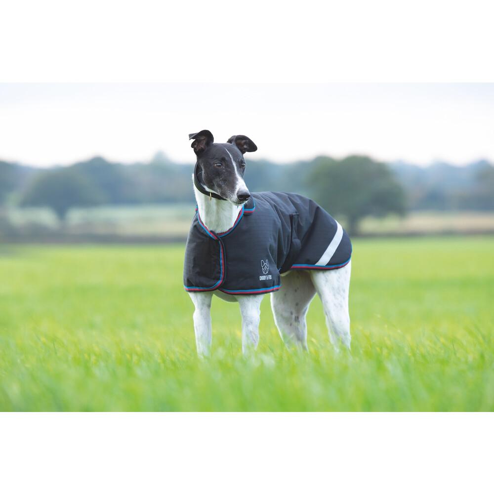 Digby & Fox Waterproof Greyhound Coat - Black in Black