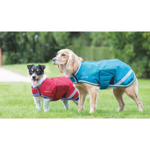 Digby & Fox Waterproof Dog Coat - Red in Red