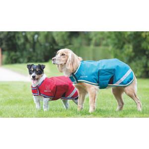 Digby & Fox Waterproof Dog Coat - Teal in Teal