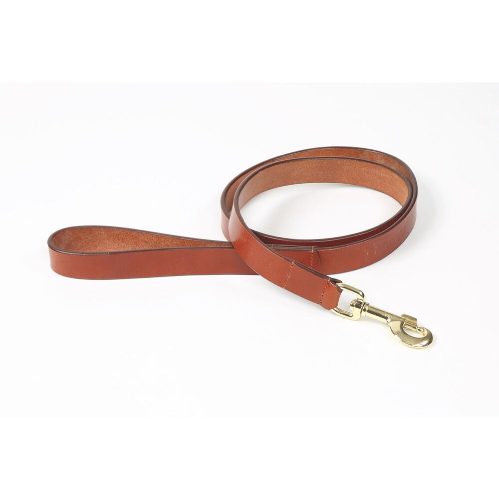 Digby & Fox Flat Leather Dog Lead - Tan in Tan