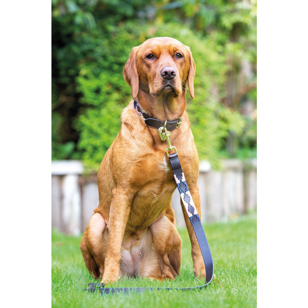 Digby & Fox Drover Polo Dog Lead - Navy/Pink/Natural in Navy/Pink/Natural