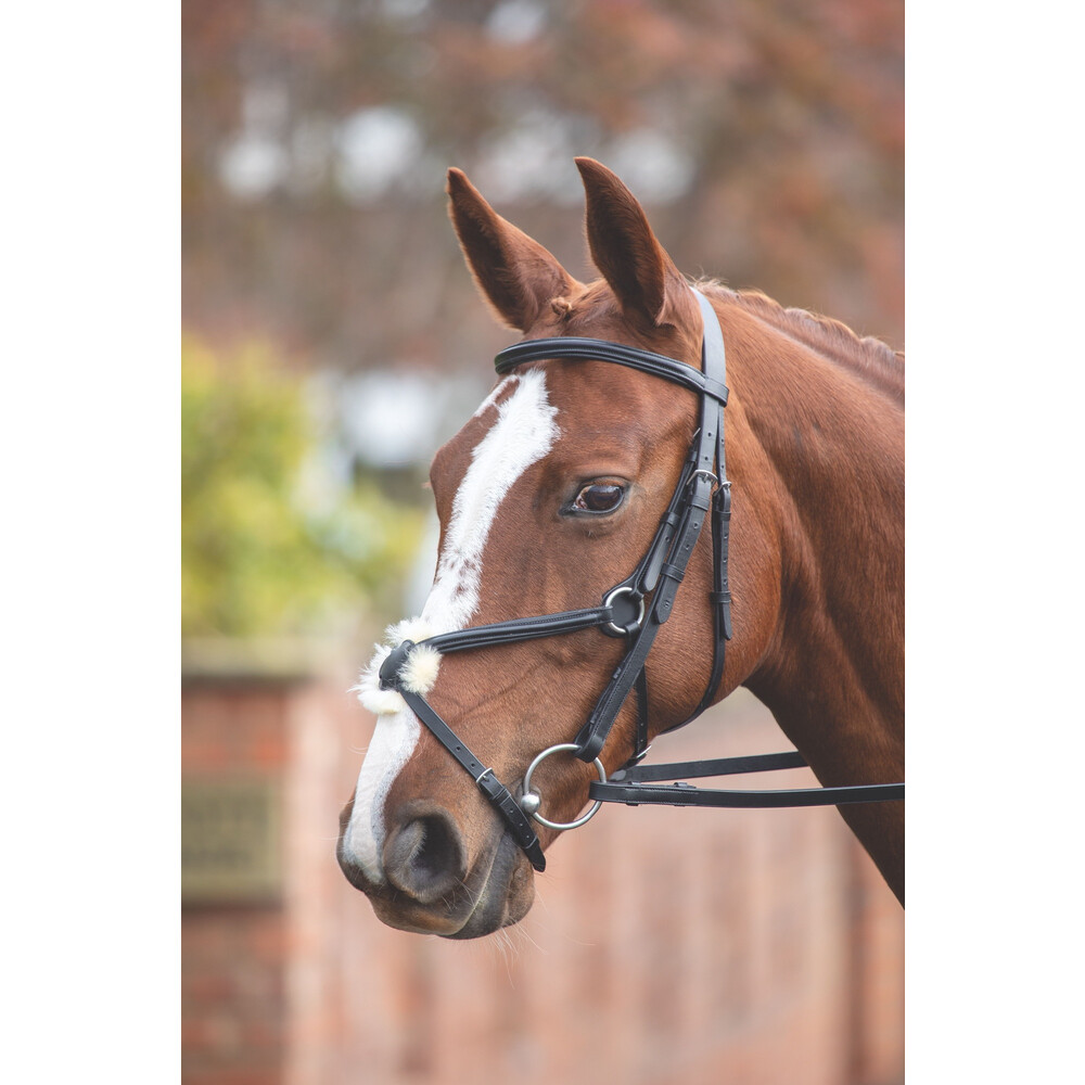 Aviemore Mexican Bridle in Black