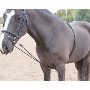 Shires Soft Lunging Aid in Black