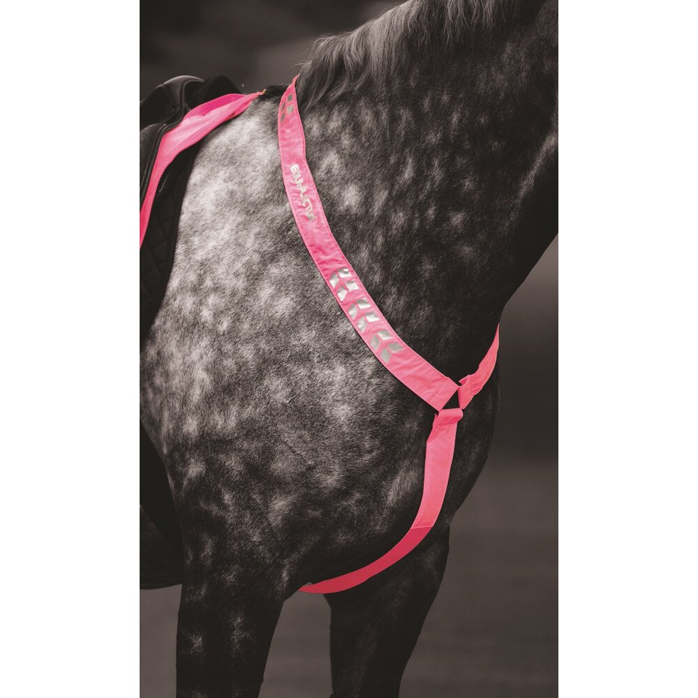 Equi-Flector EQUI-FLECTOR - Breastplate in Pink