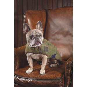 Digby & Fox Tweed Dog Coat - Red/Yellow/Blue Check in Red/Yellow/Blue Check