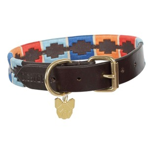 Digby & Fox Drover Polo Dog Collar - Turquoise/Red/Orange/Blue in Turquoise/Red/Orange/Blue