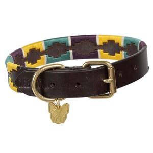 Digby & Fox Drover Polo Dog Collar - Yellow/Dark Green/Purple in Yellow/Dark Green/Purple