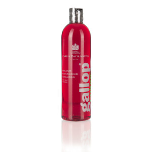 Carr & Day & Martin Gallop Colour Enhancing Shampoo 500ml -Bay in Unknown