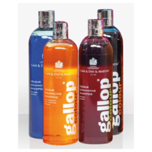 Carr & Day & Martin Gallop Colour Enhancing Shampoo 500ml - Chesnut