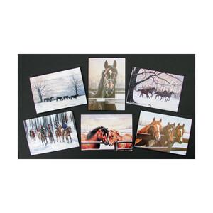 Caroline Cook Christmas Cards 12pk Unknown