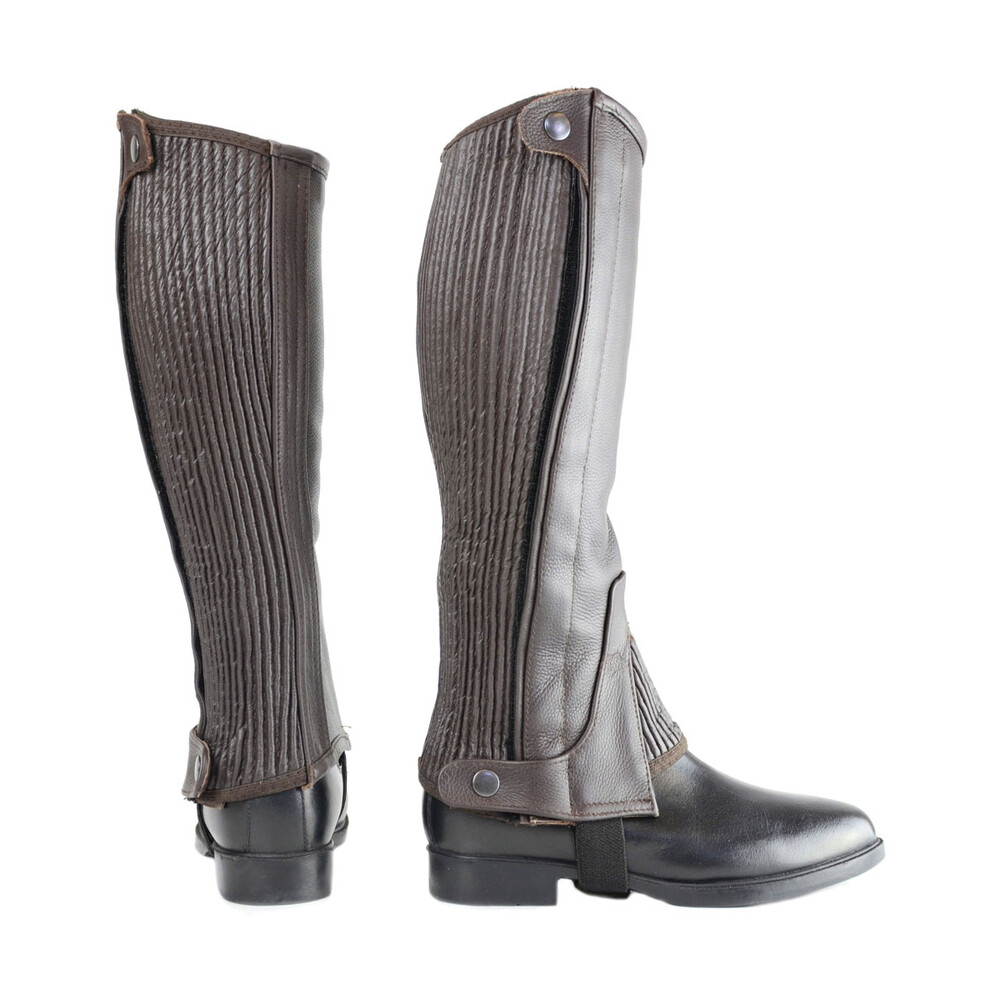 Hy Equestrian Hy Leather Half Chaps - Brown in Brown