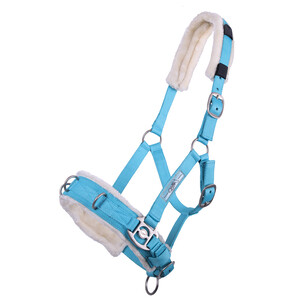 QHP Lunge Cavesson Sky Blue in Sky