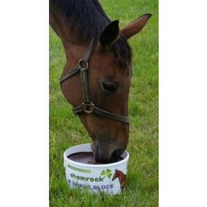 Shamrock Horse Licks in Unknown