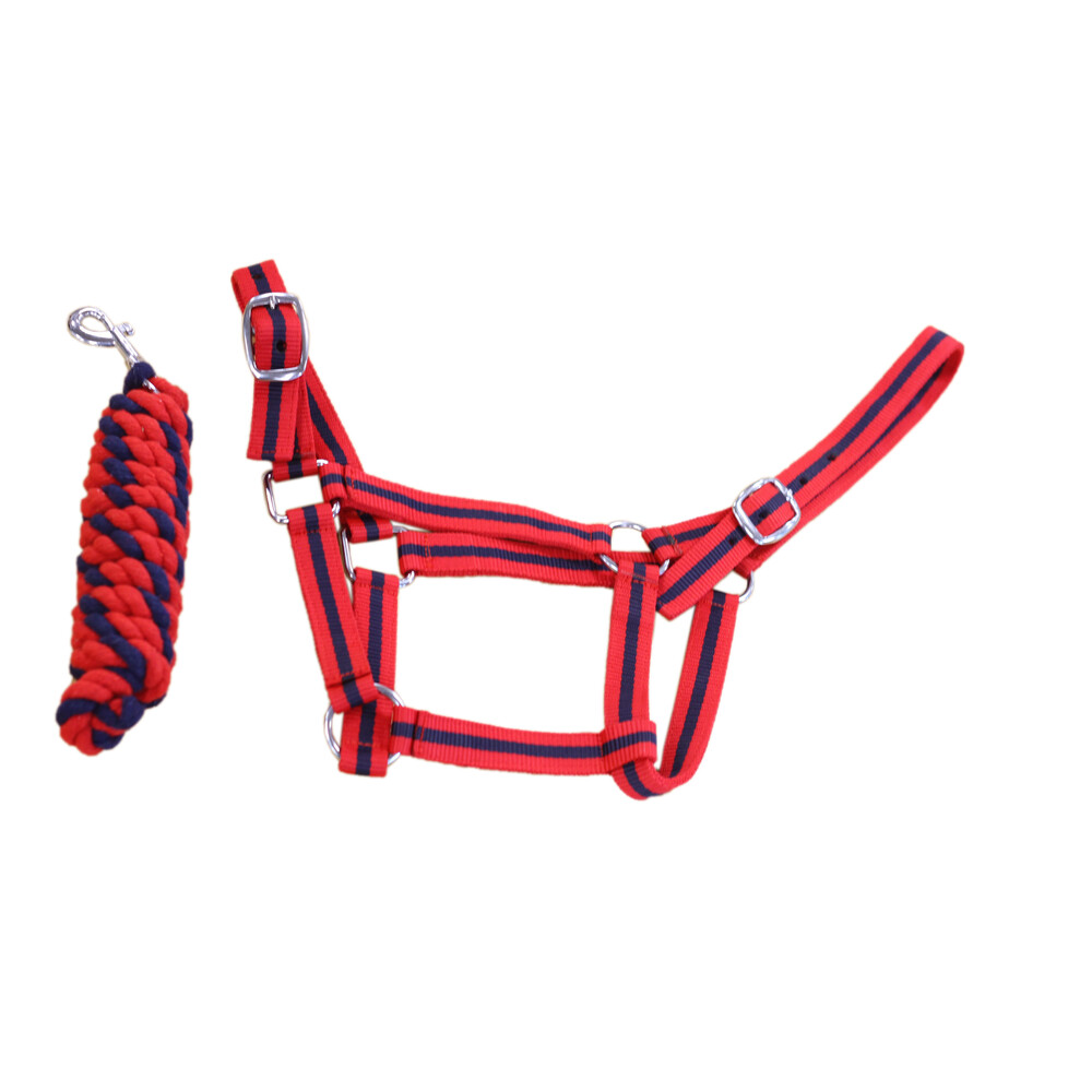 Equisential Economy Headcollar & Leadrope Set in Red/Navy