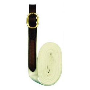Equisential Cotton Billet Lead