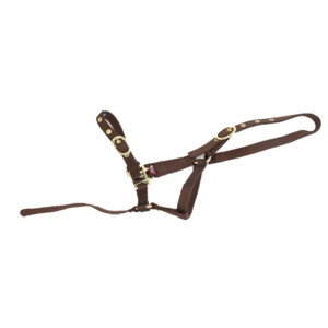 Equisential Nylon Headcollar in Brown