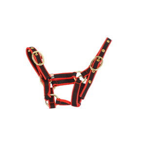 Equisential Nylon Headcollar in Red/Black