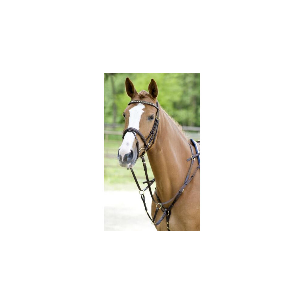 Schockemohle Race II Breastplate in Antique Brown/Gold