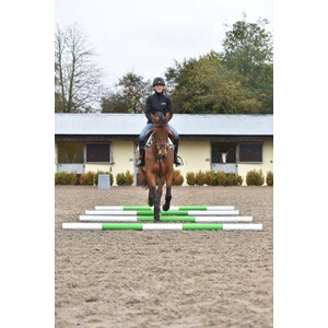 Classic Jumps 3 Band Pole in Lime Green