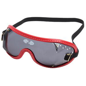 Zilco Goggles Smoke Lenses in Smoke/Red Trim